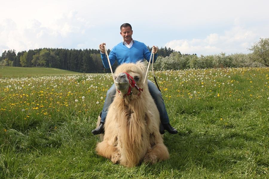 HIT auf HIT – vom Rheinfall bis ins Heidiland