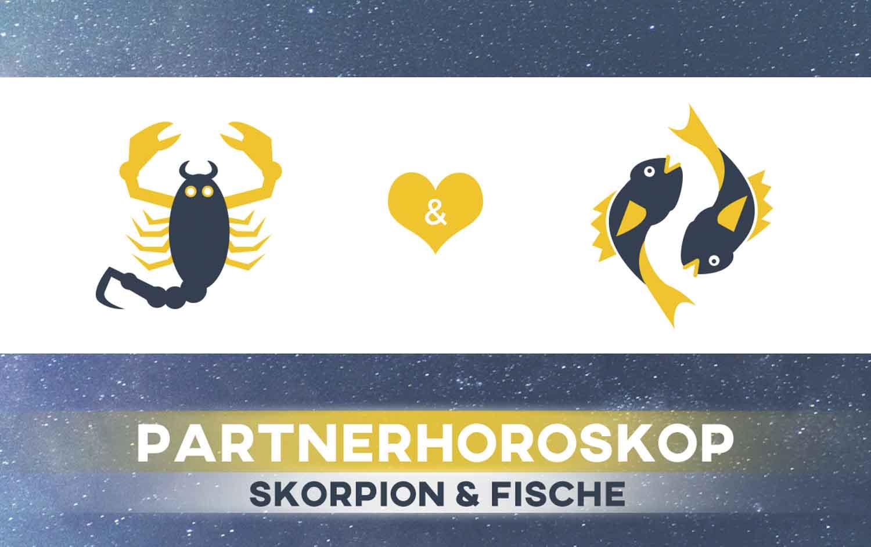 Skorpion und Fische: Passen die Sternzeichen zusammen
