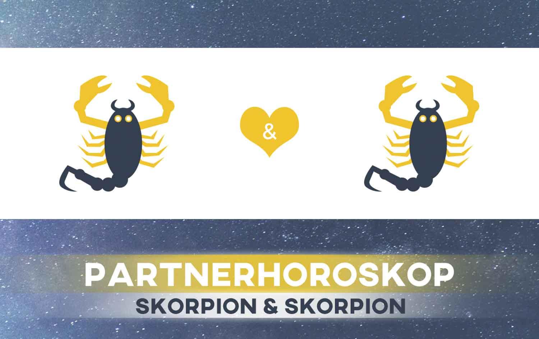 Skorpion und Skorpion: Passen die Sternzeichen zusammen