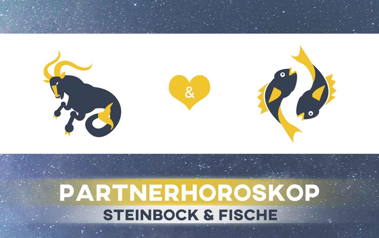 Steinbock und Fische: Passen die Sternzeichen zusammen