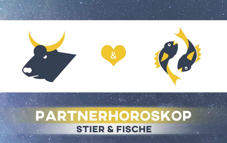 Stier und Fische: Passen die Sternzeichen zusammen