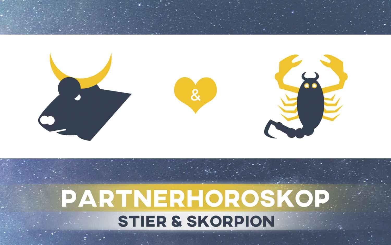 Stier passen mann frau und skorpion Skorpion und