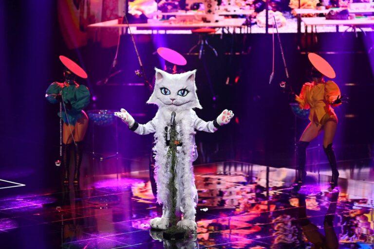Vicky Leandros: Ist die Katze jetzt aus dem Sack?